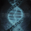 Discographie : Disturbed