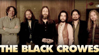THE BLACK CROWES C'est fini !